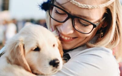 Who Gets the Dog? Divorce and Pet Custody